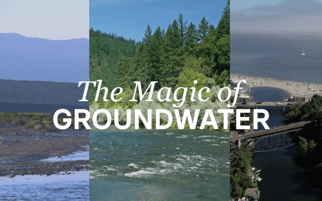 EDF: The Magic of Groundwater